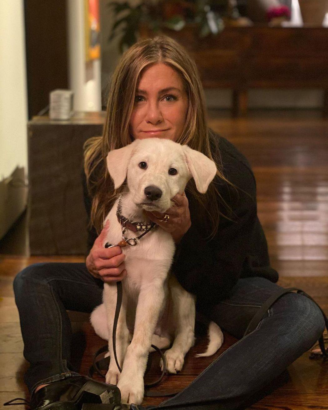 珍妮佛安妮絲頓與愛犬一起度過感恩節。圖/摘自Instagram