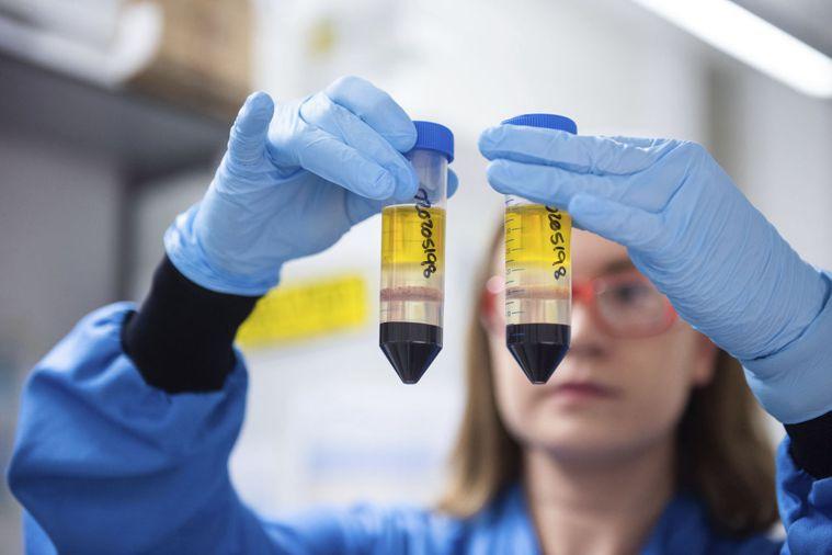 英國牛津大學和阿斯特捷利康藥廠合作的新冠疫苗,經臨床實驗顯示保護率可達九成。圖為...