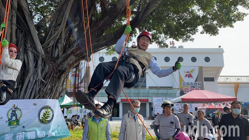 台南市長黃偉哲今天體驗攀樹,汗如雨下,直呼「離開地表2公尺就好像到太空一樣,攀樹的人真偉大」。記者鄭維真/攝影