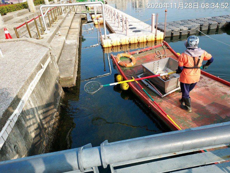 陳其邁宣示愛河還河於民,環保局今早趕在下午舉辦活動前派船撈除垃圾。圖/高市環保局提提