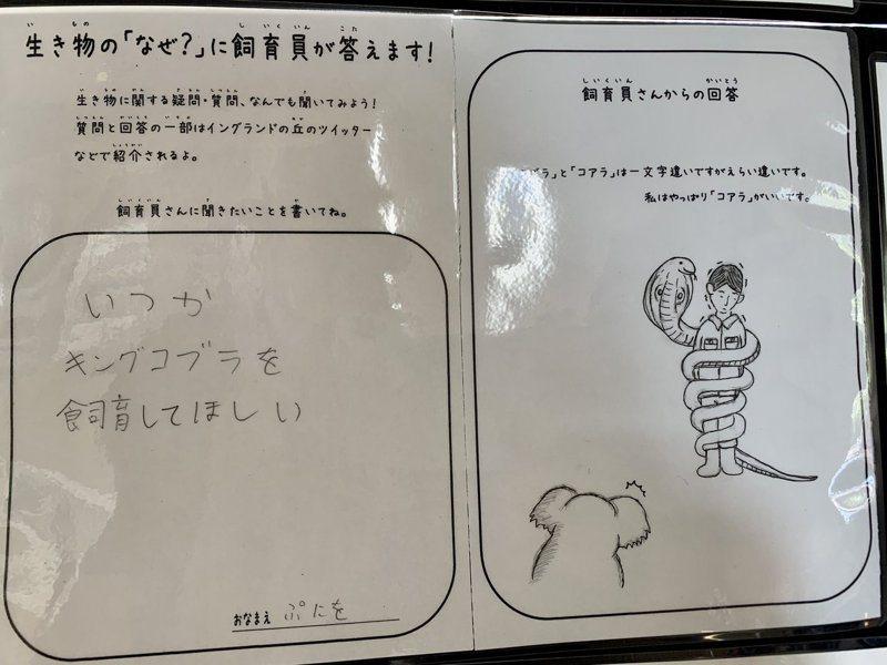 日本一名飼育員,特別用生動的插圖和幽默的口吻回答參訪小朋友天馬空的問題。圖擷自Twitter