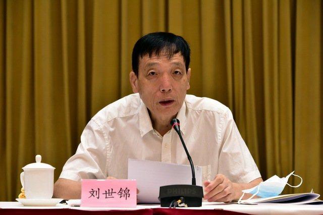 大陸全國政協經濟委員會副主任劉世錦29日表示,大陸明年可爭取7%到8%或以上的G...