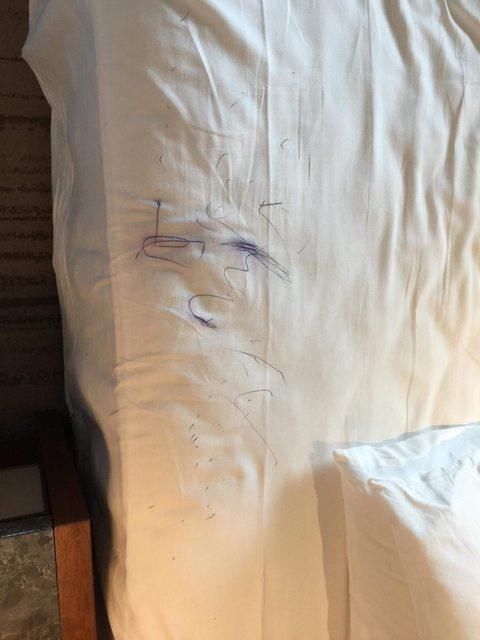 一名網友因為女兒畫了旅館的床單,被收取2千元清潔費。 圖擷自PTT