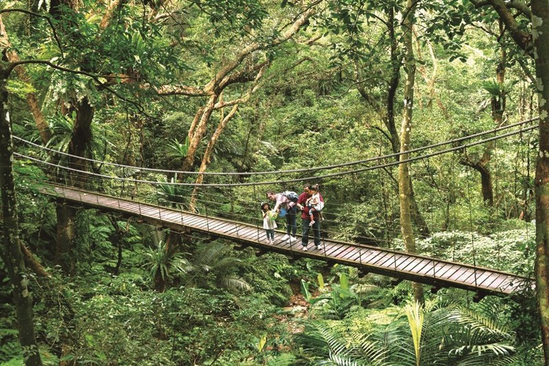 森林園區彩虹橋。 圖片提供/大板根森林溫泉酒店