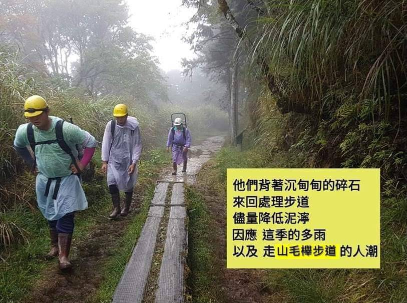 宜蘭連日多雨,太平山山毛櫸步道相當泥濘,常見一群人默默背著碎石負重上山、鋪平泥濘...