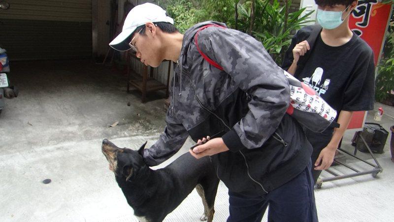 虎尾科技大學一隻被稱為阿奇的流浪犬,因一位老師被嚇到,引發一場風波,學生認為校犬還滿友善的。記者蔡維斌/攝影