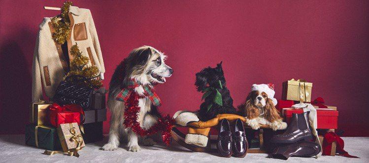 TOD'S推出以狗狗為主題的「A PAWFECT HOLIDAY」企劃形象廣告。...