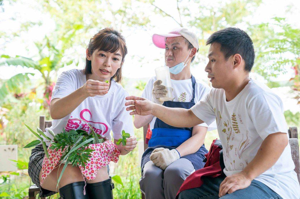 TVBS「健康2.0」主持人鄭凱云(左)訪樂山教養院,擔任「自立農藝班」一日志工