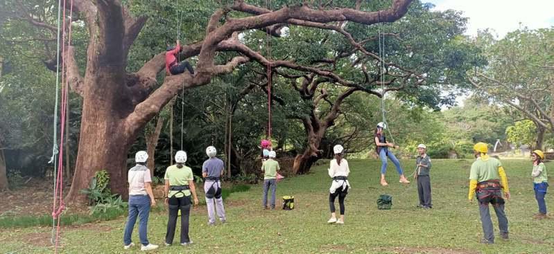 屏東墾丁社頂部落最近和台灣攀樹協會合作,不定期在周六將休閒攀樹導入社區生態旅遊遊程,在專業攀樹教練的指導協助下,大小朋友短暫地離開地球表面,拉近與天空跟樹木的距離。記者潘欣中/翻攝