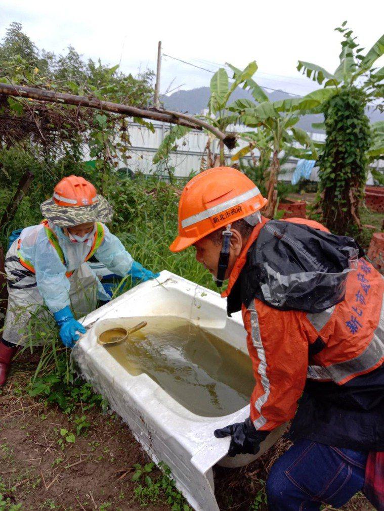 新北市環保局清潔人員在菜園清除孳生源。圖/環保署提供