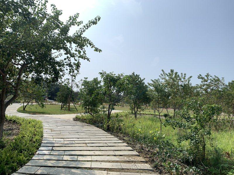 新竹市香山濕地公園尊重自然設計,創造許多活動空間。圖/市府提供
