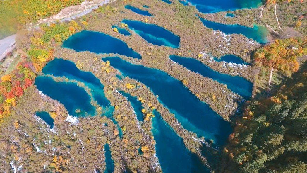 深秋的九寨溝樹正群海,藍得醉人。 圖/本報四川阿壩州傳真