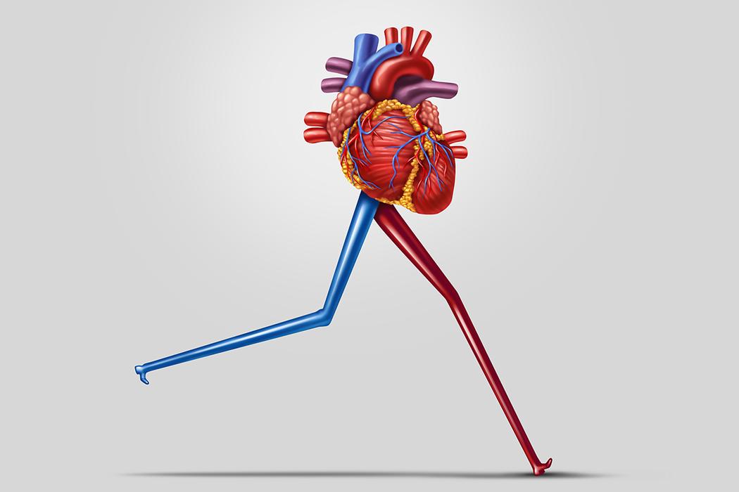 短暫的運動就會對代謝物產生巨大影響,這些代謝物控制著身體的關鍵功能,如胰島素阻抗...