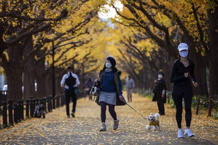 東京都今天新增500例確診病例,超過11月18日的485例,創週三公布病例數新高...