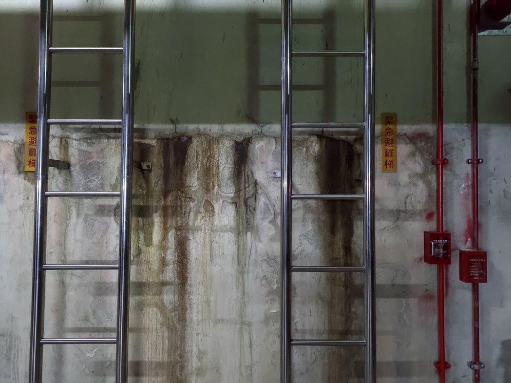 ●地下室外牆牆面漏水不僅影響美觀,嚴重時更可能危害大樓結構體。