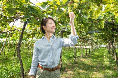 【優質系】 楊仁亞 種下台灣果實 為父親實現葡萄酒夢