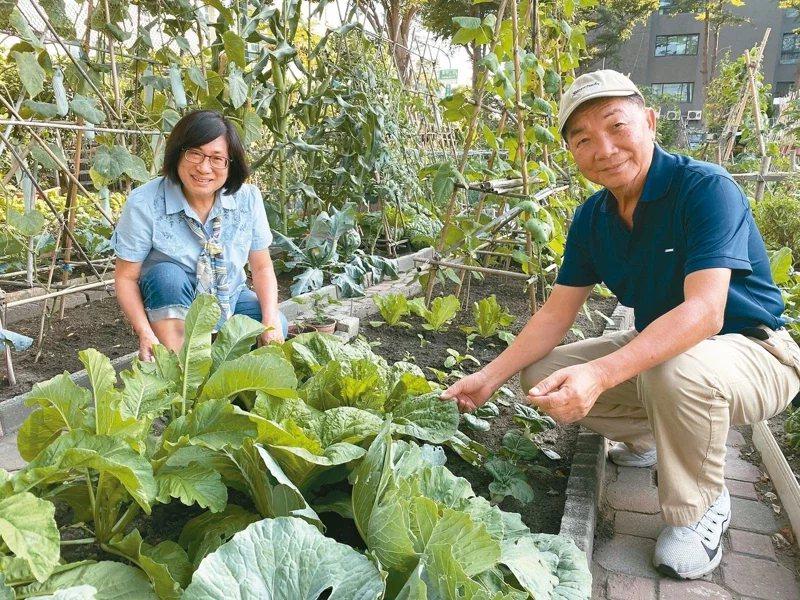 林志忠(右)除了擔任調解委員,平時與妻子投入社區營造,種植有機蔬菜。 圖/鄭維真...