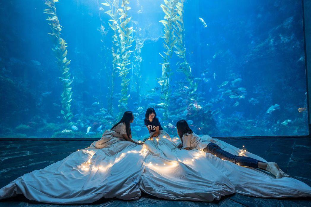 夜宿屏東海生館被民眾列為一生必去的旅遊清單。  屏東海生館 提供
