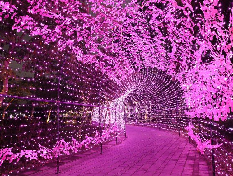 願景公園粉紅燈廊。圖/宏匯廣場提供