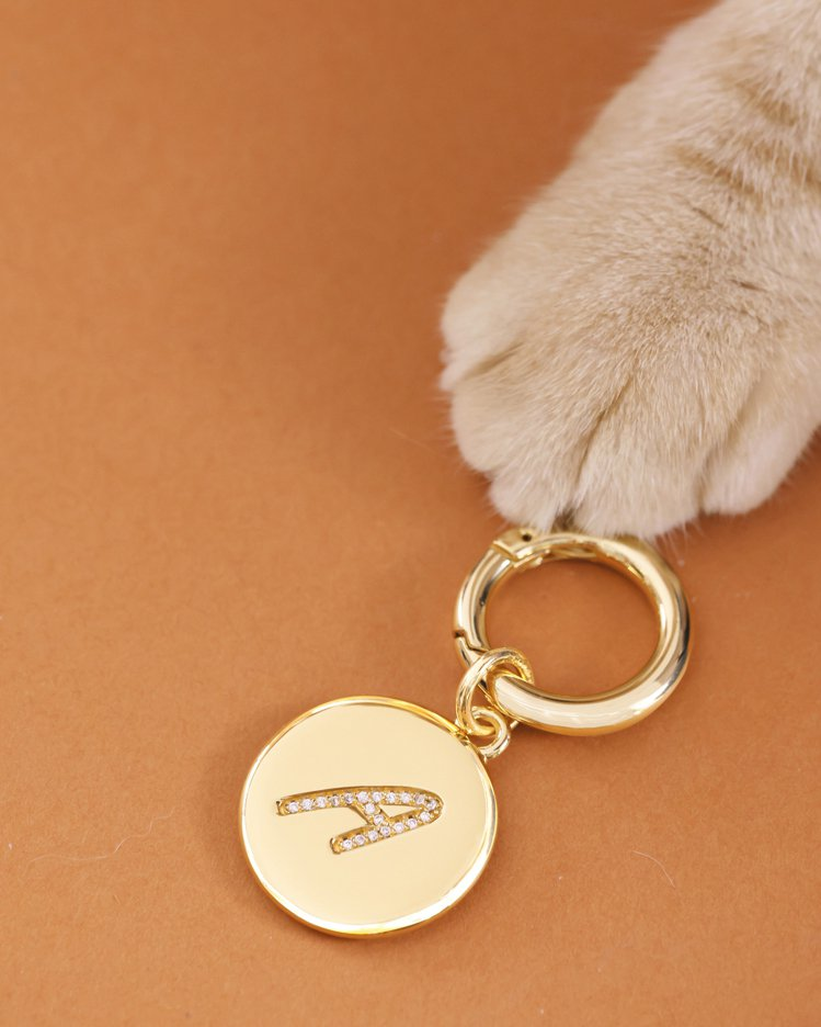 INITIAL系列字母寵物金屬吊飾,2,200元。圖/ANVI Studios提...