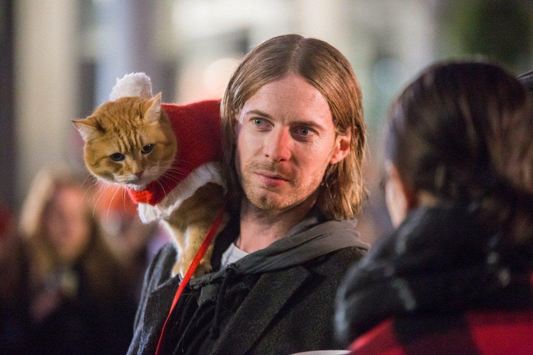 「再見街貓BOB」劇照。圖/采昌提供