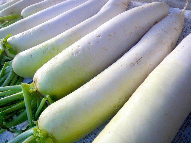 日本網友分析如何從外觀,就分辨出一根蘿蔔辣味強不強。圖擷取自まいどなニュース
