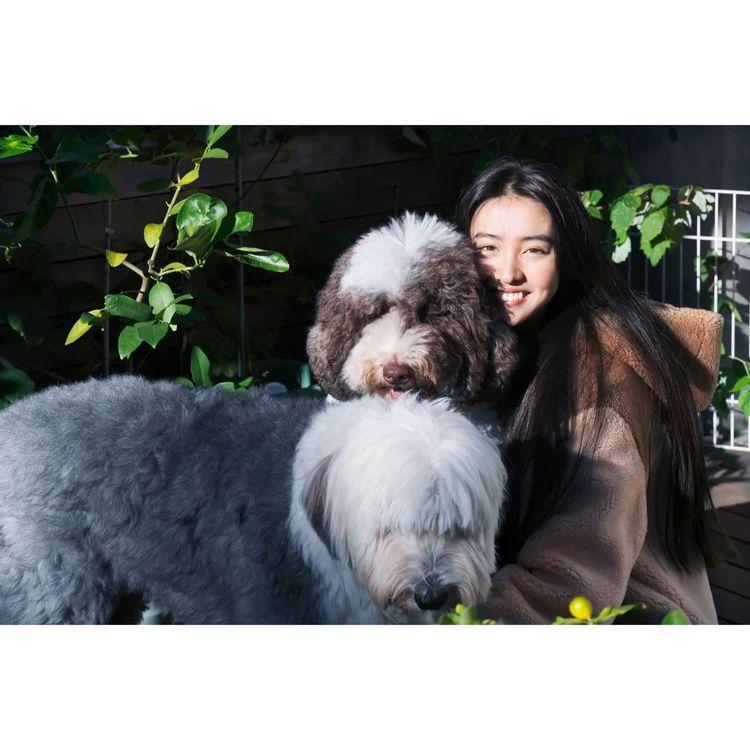 木村光希穿Loro Piana和家裡的兩隻毛小孩一起入鏡。圖/取自微博