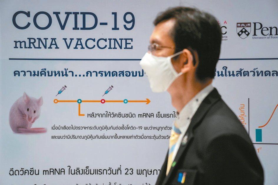 WHO預期明年第1季可取得5億劑疫苗供分發。 (路透)