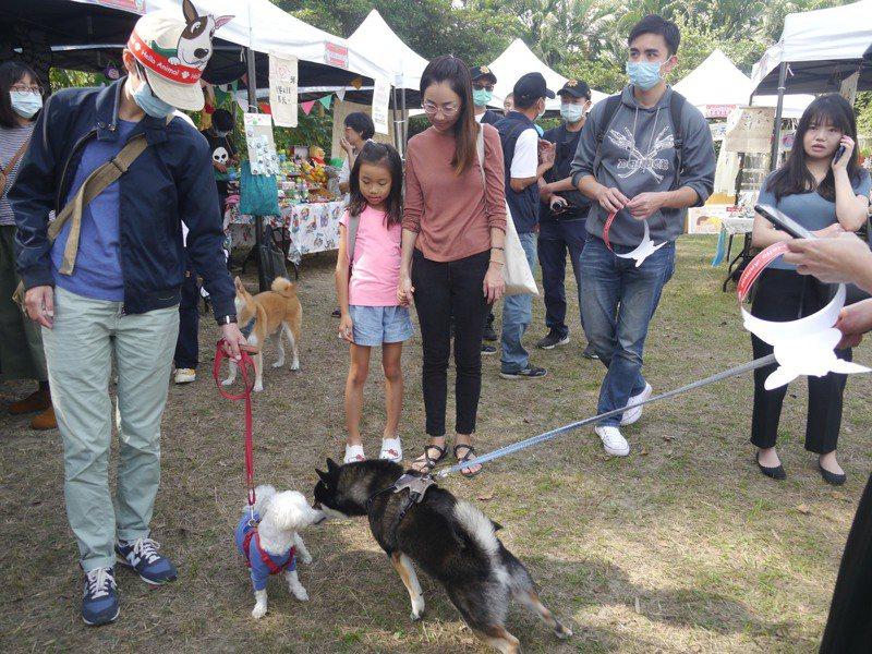 第二屆吹狗螺音樂生活節今年以「毛神布道大會」當主題,許多參與民眾帶著毛小孩參加活動。記者徐白櫻/攝影