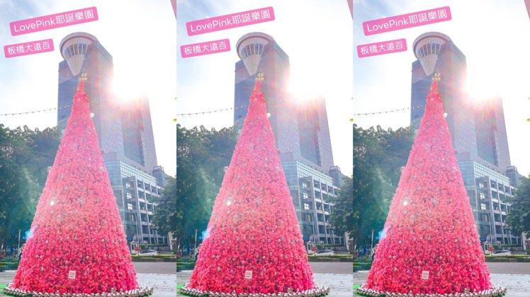 板橋大遠百粉紅耶誕樹。圖/摘自板橋大遠百粉絲團