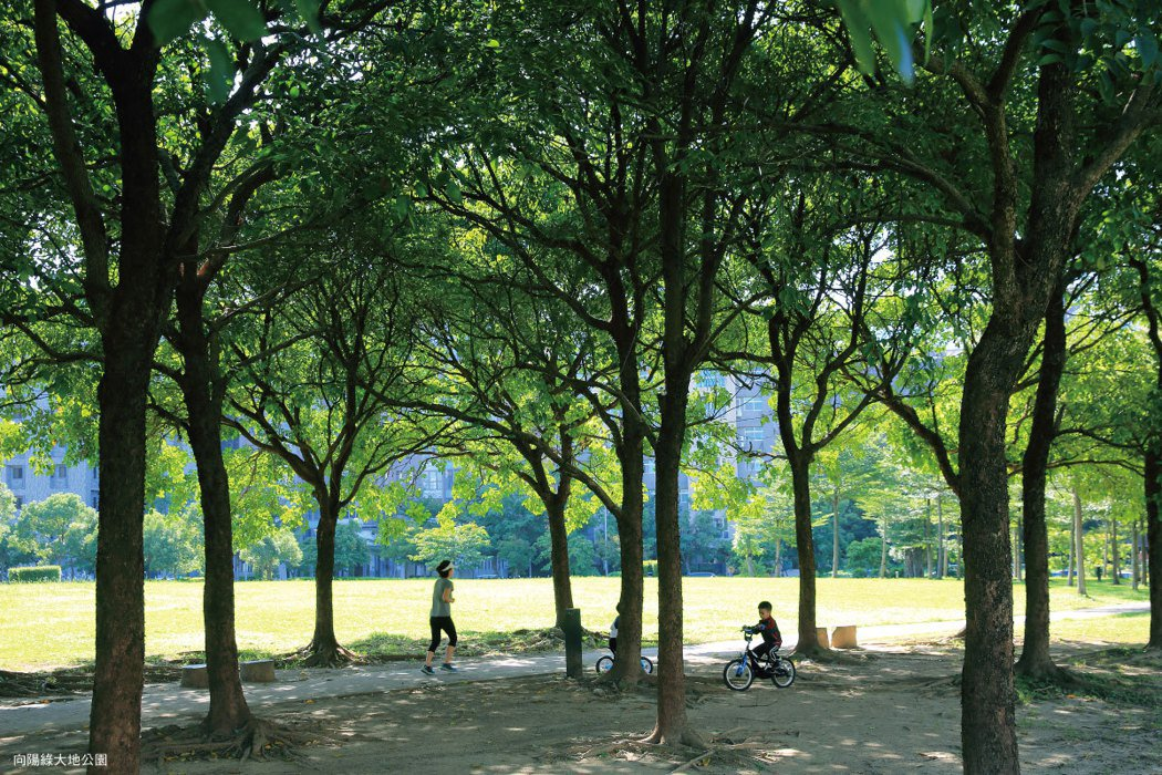 「擎天森林」不僅享有26層山河極景,更坐擁綠海環繞,街廓氛圍極為愜意。 圖/海悅...