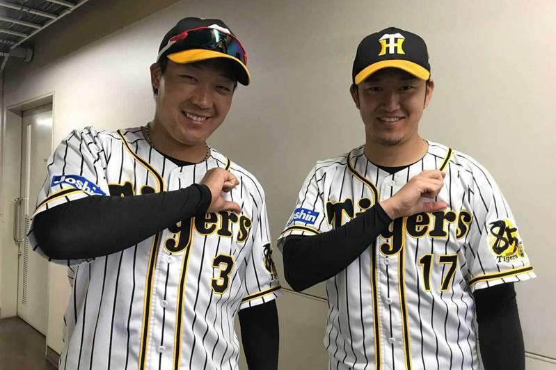 大山悠輔(左)是阪神今年唯一打出雙位數全壘打的本土打者,他的28轟在央聯排名第2。 擷圖自阪神虎官方FB粉絲團