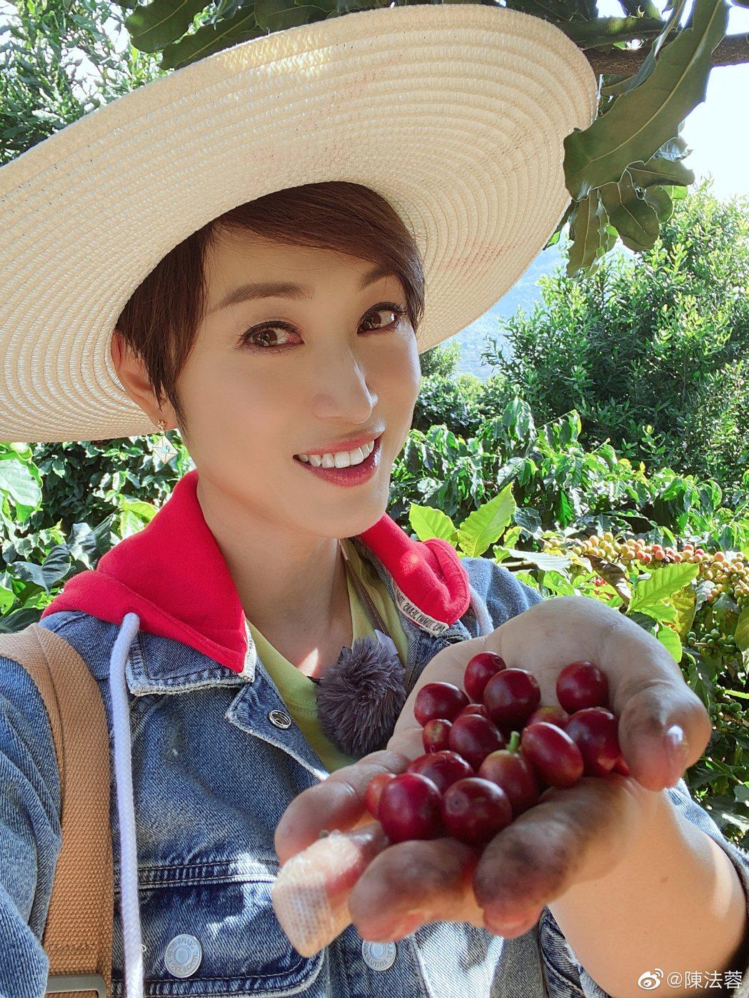 女星陳法蓉儘管已54歲仍保養得宜。圖/擷自微博