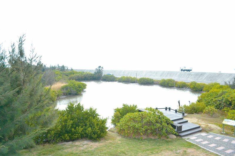 台南市城西防風林生態豐富,是旅遊新祕境,夢幻湖常吸引新人來此拍婚紗照。 記者鄭惠仁/攝影
