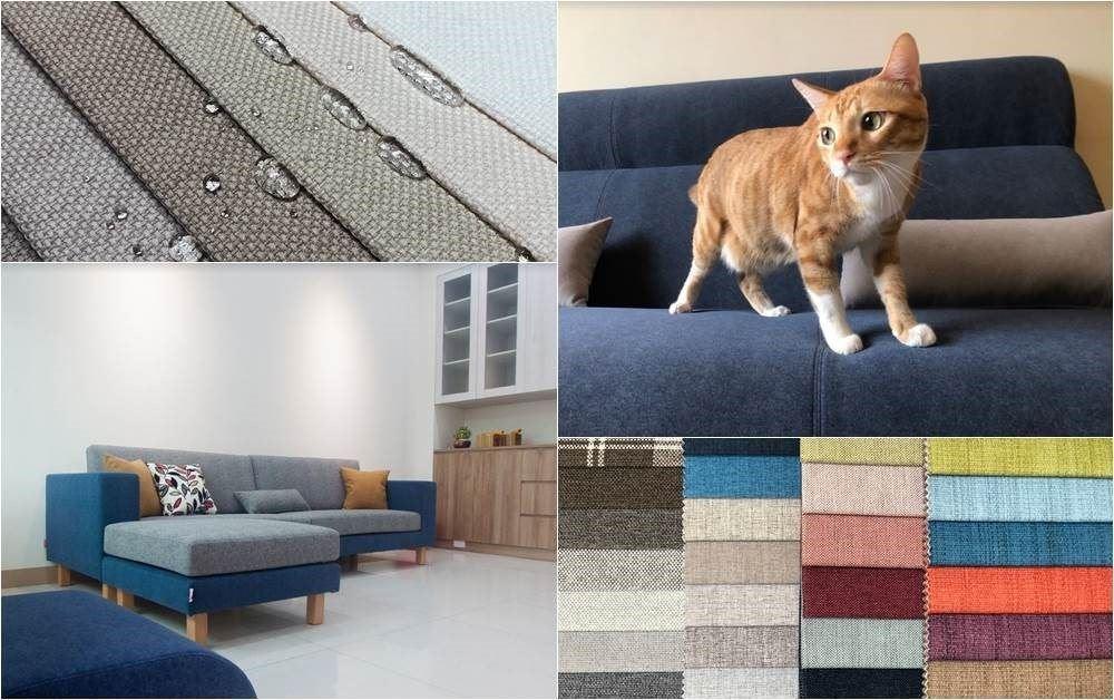兼顧貓咪健康和家具外觀,建議家中可使用防滑、耐磨、耐汙的地板材質。 圖/椅子工廠...