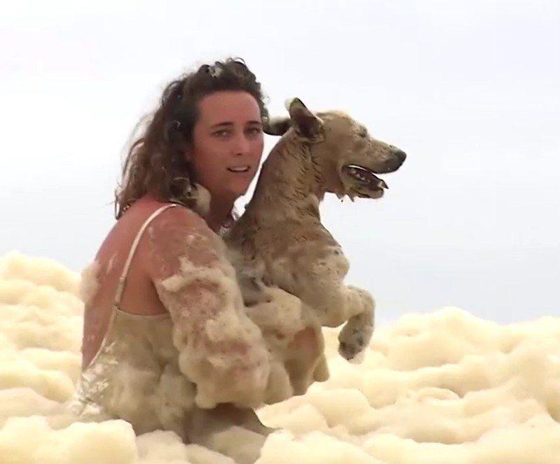 一只叫「黑泽尔」的狗狗兴奋地冲进泡沫海里顿时失去踪影,所幸主人在游客帮忙下寻回。路透/Seven News(photo:UDN)