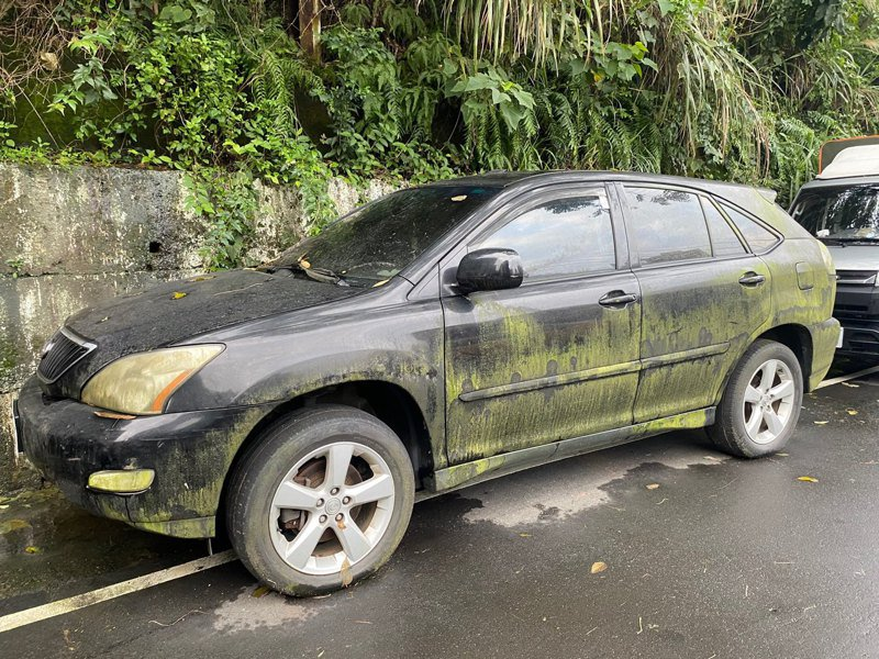 新北市汐止地區已連續降雨整整1個月,讓許多在地民眾「快發霉了!」一名侯姓網友就發現被雨淋成「漸層綠」的汽車,意外為大地增添綠意。 圖/網友授權