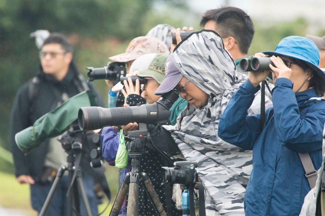 記者多次參與觀鳥,有時碰上大雨,參加者惋惜天氣讓視距有限。但導覽者說,生物在雨天...