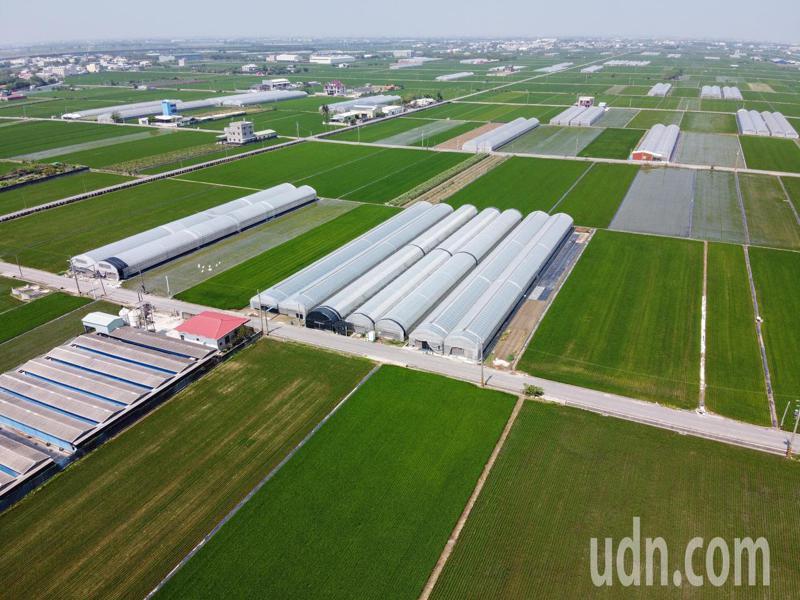 太保「有機稻米專區」共48公頃,2個區塊,方正完整,四周以農路以及溝渠為界。圖/太保市農會提供