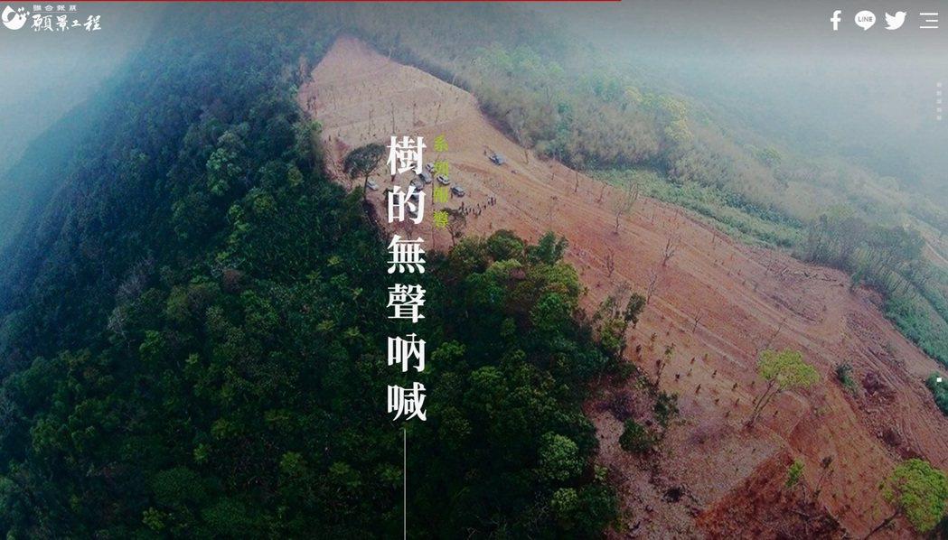 數位專題呈現樹的各種慘狀,盼有朝一日樹都能健康長大。圖片擷取自數位專題網站