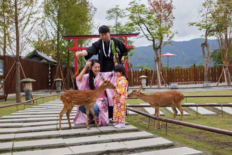 全家大小一起在和風園區中穿著浴衣餵小鹿就像一秒穿越到日本。