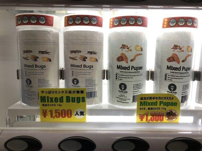 日本的昆虫零食贩卖机。图取自2ch(photo:UDN)