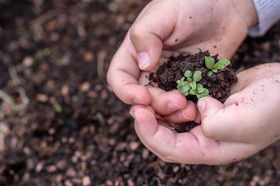 ESG是企業體質調整的藥方,是創新的藥引,是轉型的觸媒,引導企業家看遠、看廣。 ...
