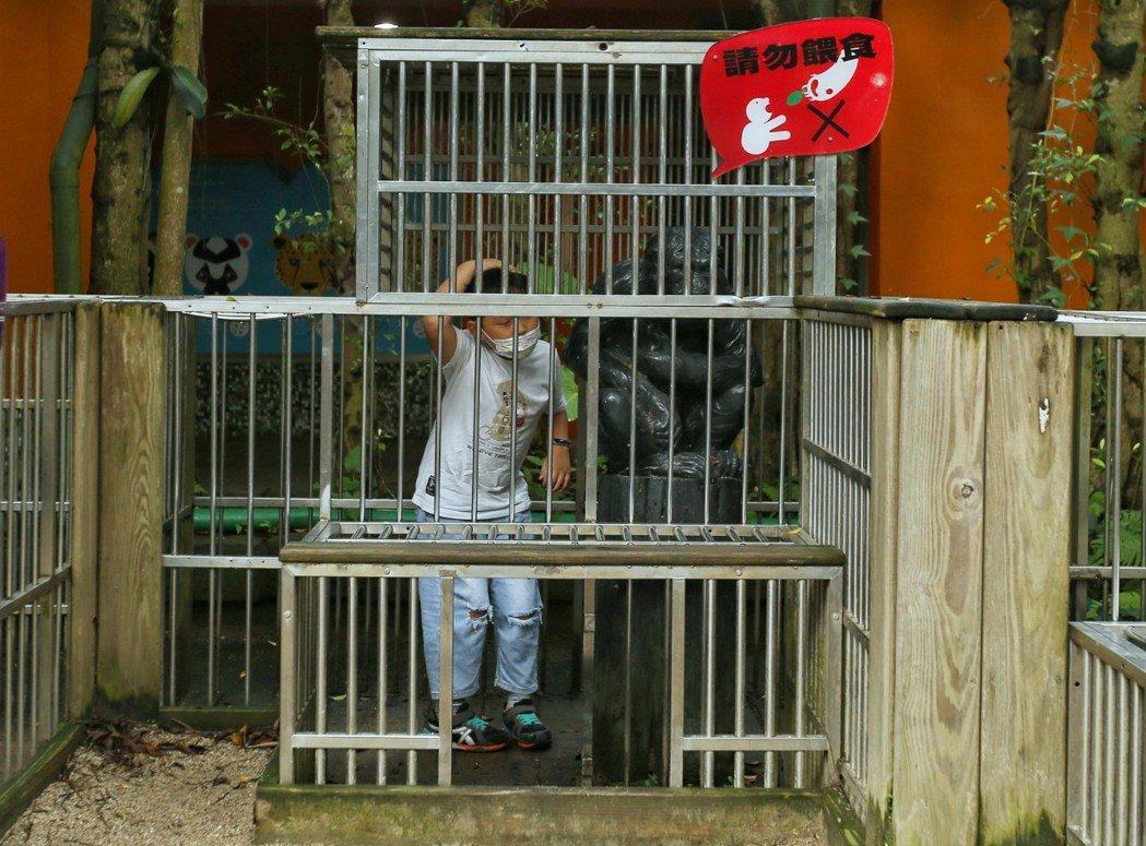 動物園難得有空間不展示動物,是展示籠子,供孩子認識動物園史。記者曾原信/攝影