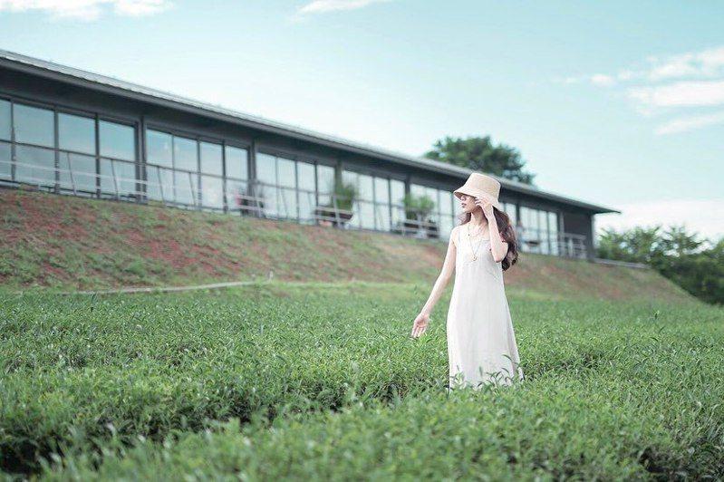 ▲苗栗景點推薦-銅鑼茶廠。 (圖/rachel.xinru, Instagram)