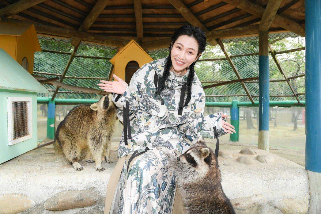 曾莞婷最愛可愛的浣熊,在親手餵牠們吃蘋果。圖/三立提供
