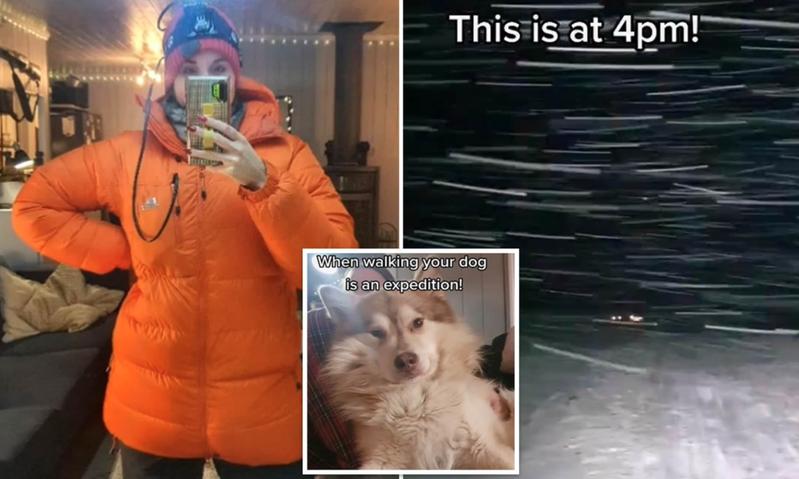 北极圈内的挪威斯瓦巴群岛现正处于天寒地冻的永夜时分,下午4点出门,外面一片漆黑还刮着风雪,遛狗就是一次冒险。TikTok/@sejsejlija(photo:UDN)