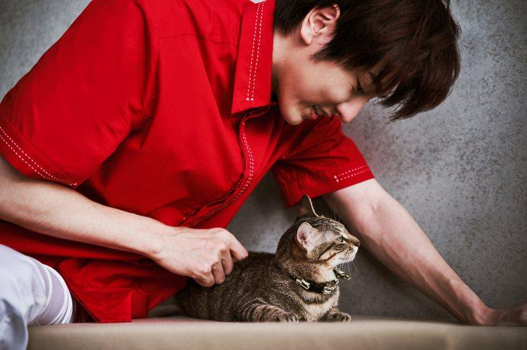 陳璽安詮釋夏姿2021春夏男裝,和流浪貓一起拍攝公益明信片套組。圖/畢獅國際娛樂