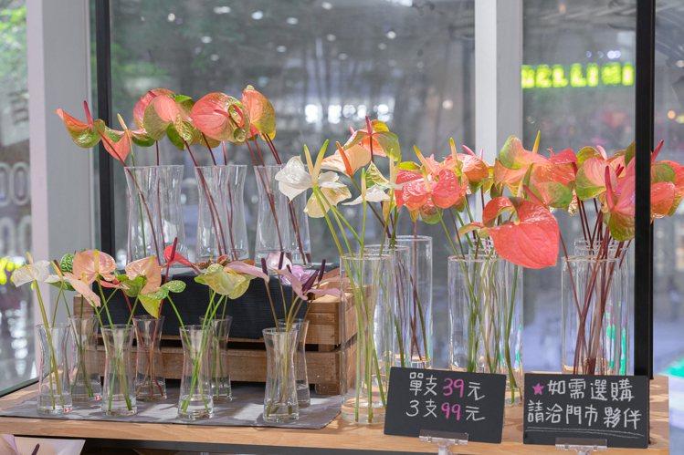 MUJI無印良品發現台南六甲的火鶴花,量多質精,南紡門市可直接購買。圖/MUJI...