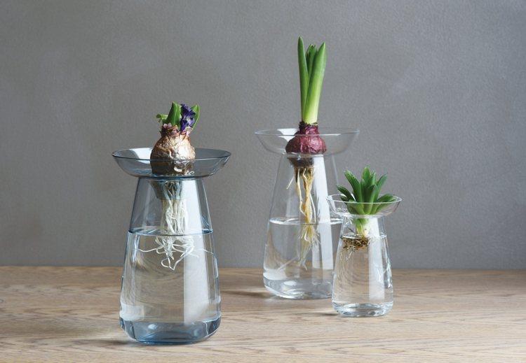 日本KINTO玻璃花瓶。圖/WUZ屋子提供